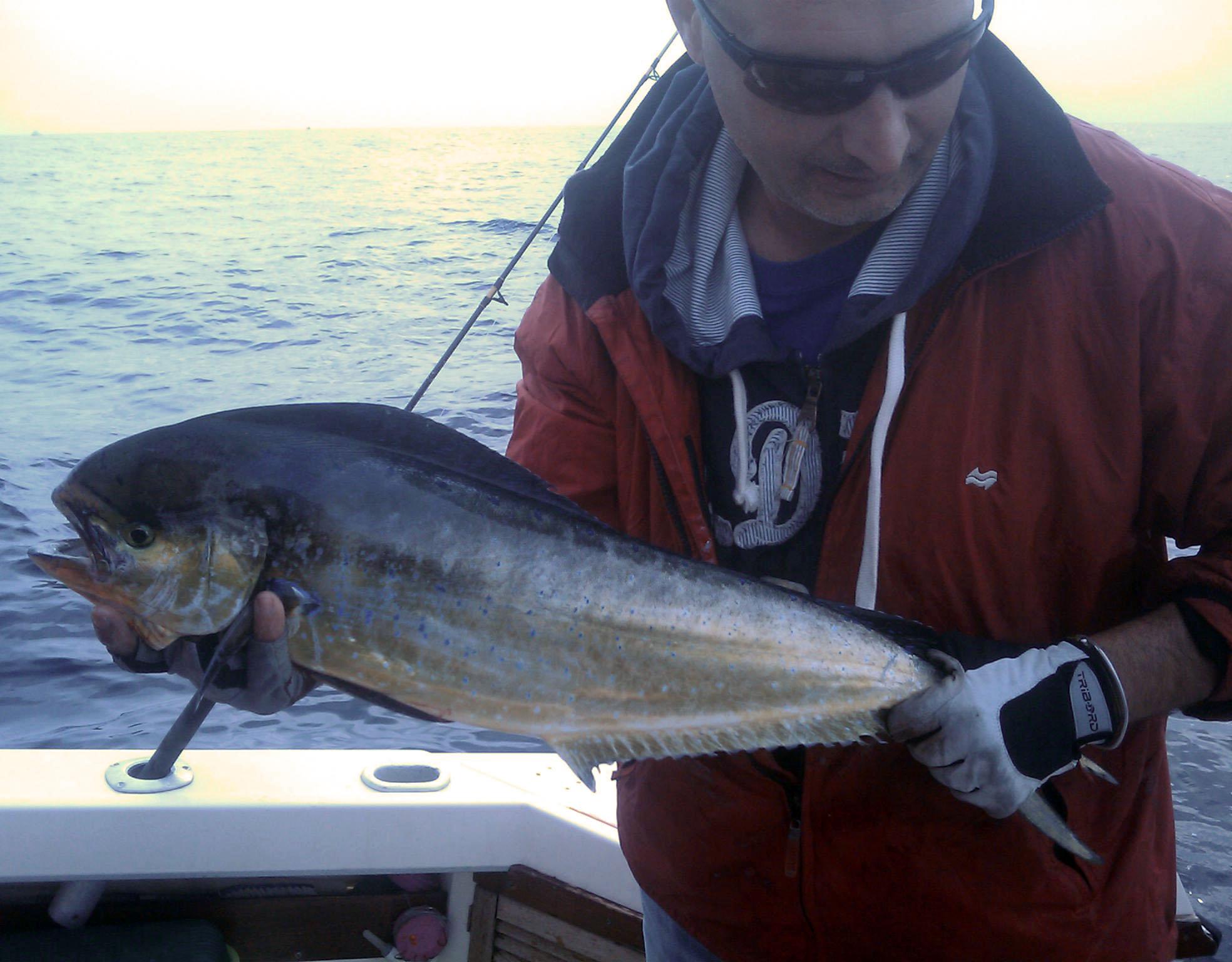 Gioco pesca fantastica con dinamite
