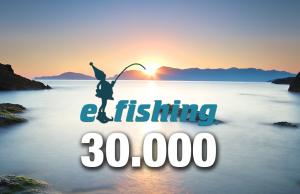 30000 elfi